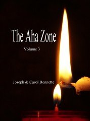 The Aha Zone - Volume 3